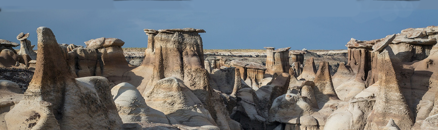 The Bisti rock formations